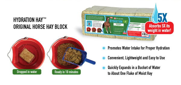 hydration hay graphic My Horses Love Purina Hydration Hay!