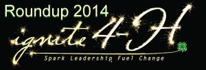4H_roundup_logo_2014