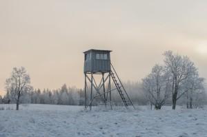 winter hunting