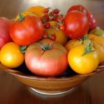 April Garden Tips