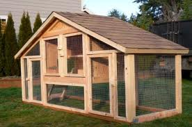 ChickenCoop3