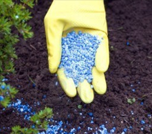 Fertilizer_in_Glove_small